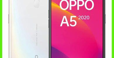 Oppo A5: características y opiniones