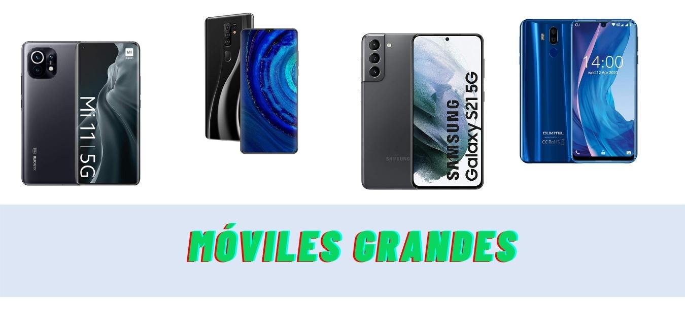 ¿Cuáles son los 14 mejores móviles grandes?